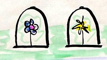 Blumen in Rahmen